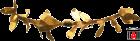 IMGP0865